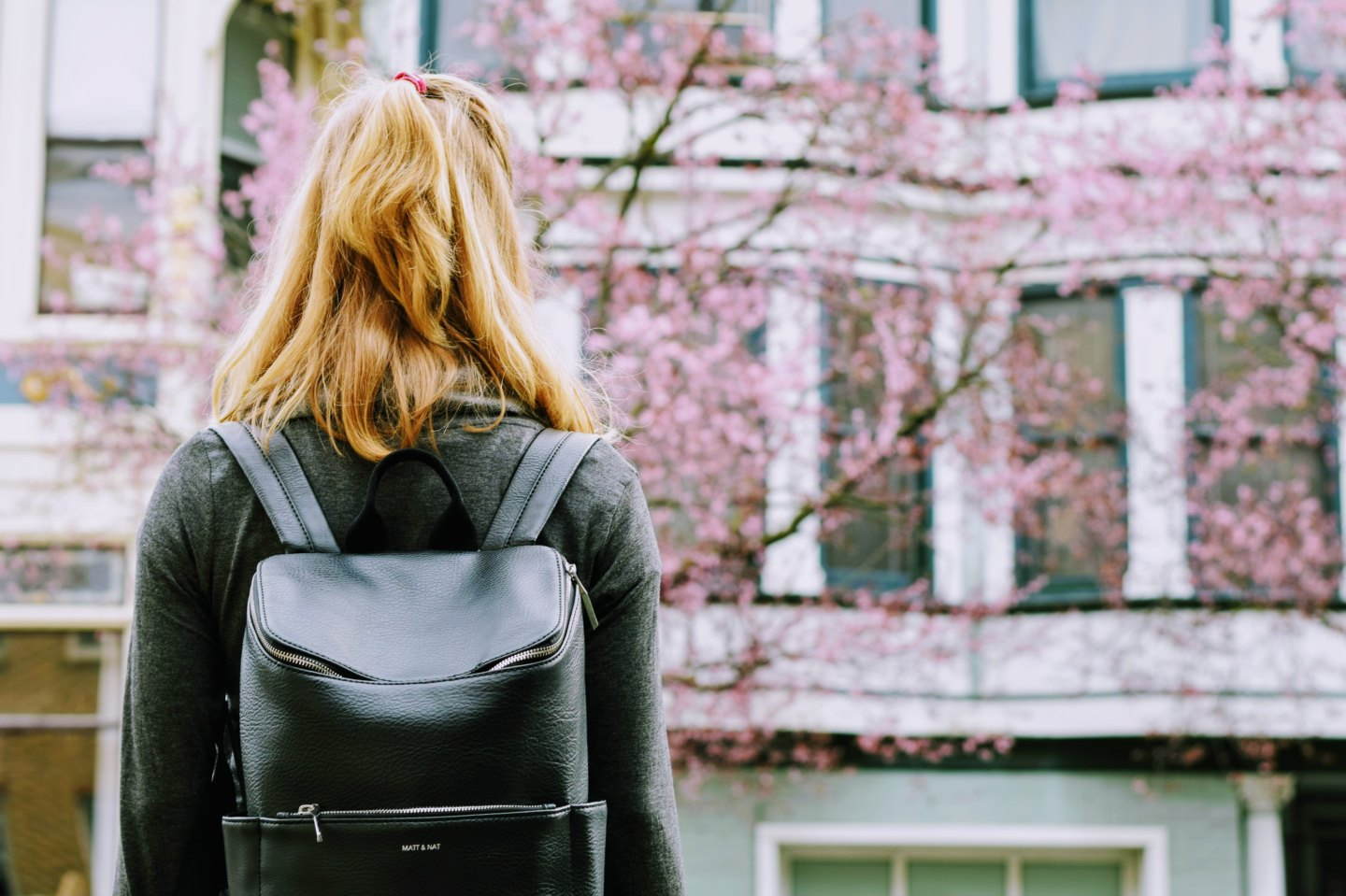 A blonde young woman with her hair in a half pony stands with her back to the camera, a black backpack on her back, looking at flowering cherry blossom trees in front of a white building