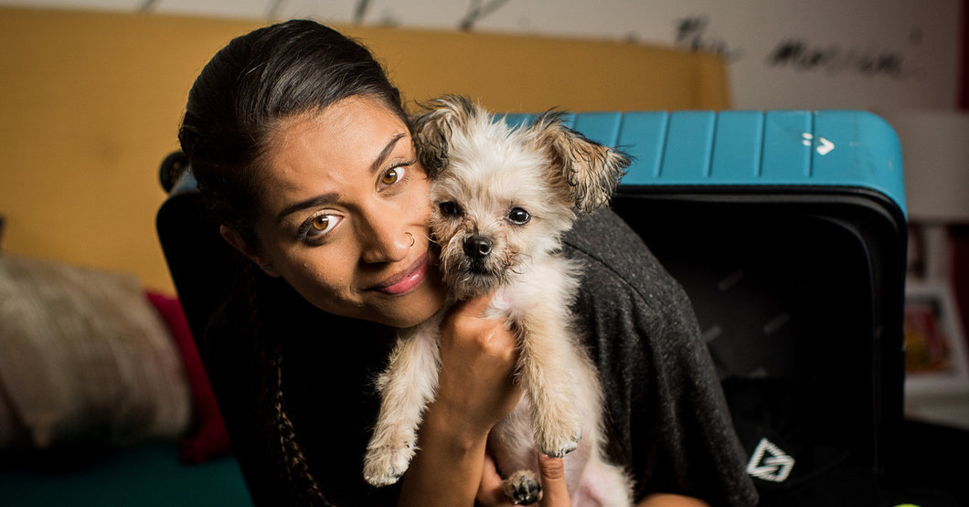 YouTuber Lilly Singh holding her puppy Scarbro