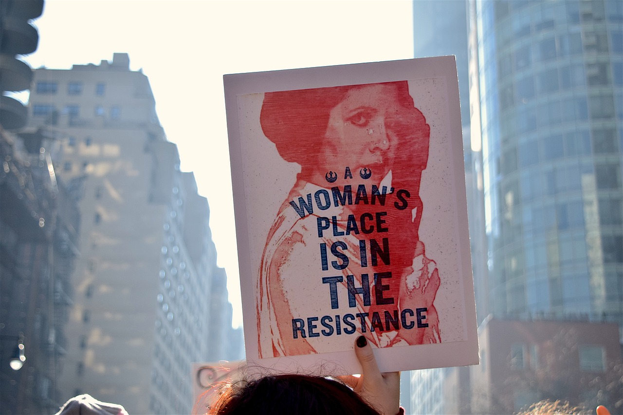 "A sign bearing a red printing of Princess Leia (Carrie Fisher) from Star Wars holding a blaster, with two dark blue Resistance logos and the words ""A woman's place is in the resistance"" written over her."