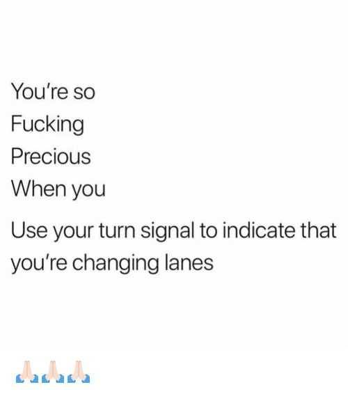 meme - you're so fucking precious when you use your turn signal to indicate you're changing lanes